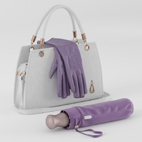handbag umbrella gloves