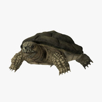 3dsmax turtle