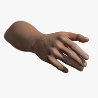 3d model rigged hand male