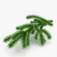 Christmas Fir Branch 2