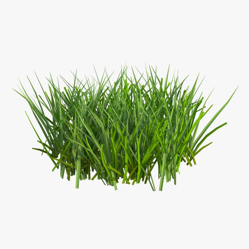 Grass 3d model 01.jpg