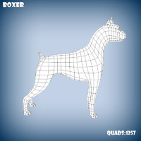 base mesh boxer dog 3d model