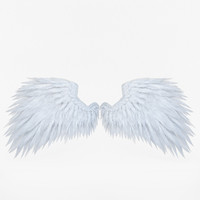 feathers wings 3d model