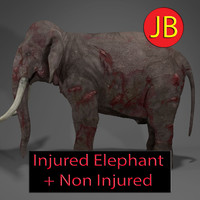 elephant injured 3d model