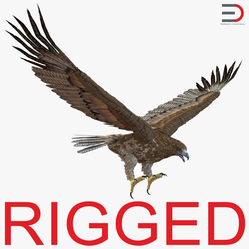 Gurney Eagle Rigged 3d model 01.jpg