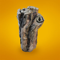 free realistic scanned trunk 3d model