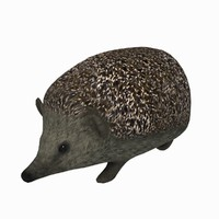 hedgehog 3d obj