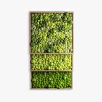 3d max panels moss