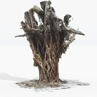 Complex Tree