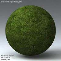 Grass Landscape Shader_007