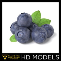 3d bluberries blueberry model