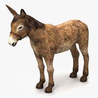 donkey 3d 3ds
