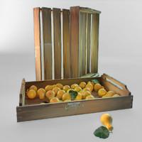 3d model ripe pears