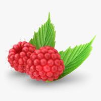 3d realistic raspberry