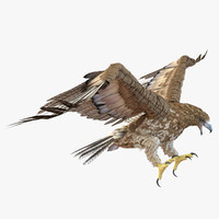 gurney eagle pose 2 3d 3ds