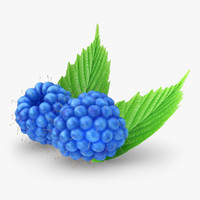 3d realistic raspberry blue model