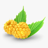 3d realistic raspberry yellow