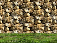Stone wall 119