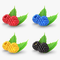 3d realistic raspberry set