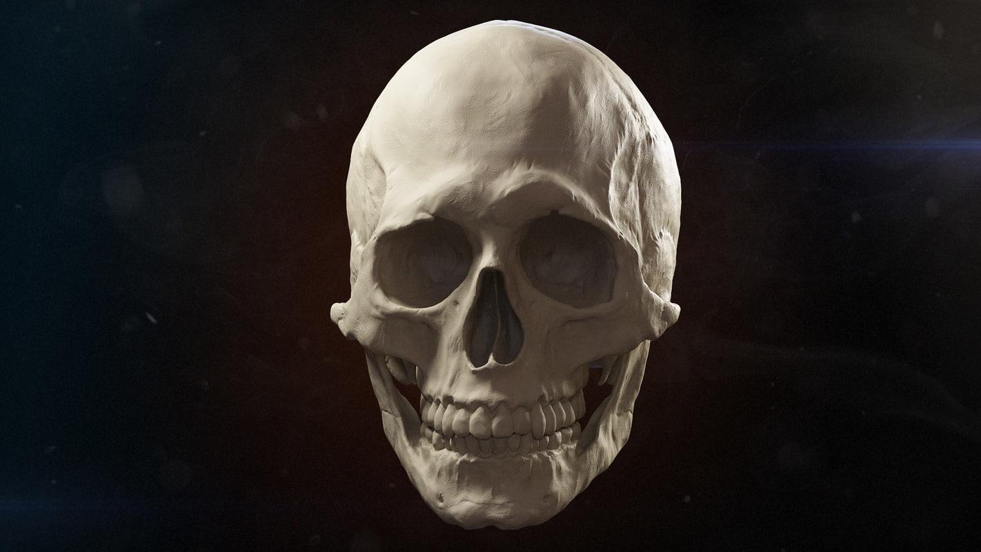 Skull-B-export-01.jpg