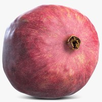 3d pomegranate