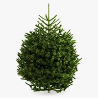 3d model 2 fir tree