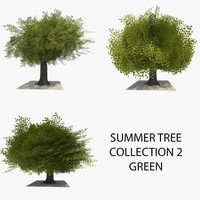 3 trees summer version 3d model