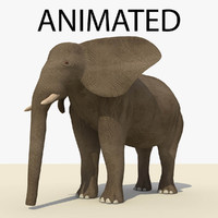 brown elephant animations 3d c4d