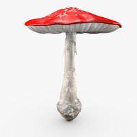 big amanita mushroom obj