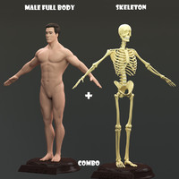 male body skeleton obj