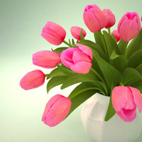 tulips pink bouquet max