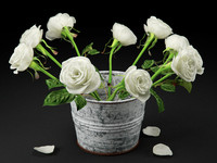 3d roses painted bucket