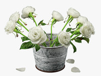 roses painted bucket 3d model