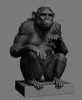 chimp ztl stl 3d model