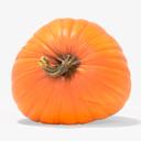 pumpkin 3D models