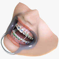 realistic orthodontic anatomy mouth max