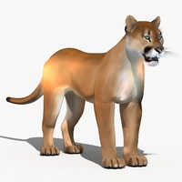 3ds max cougar tiger