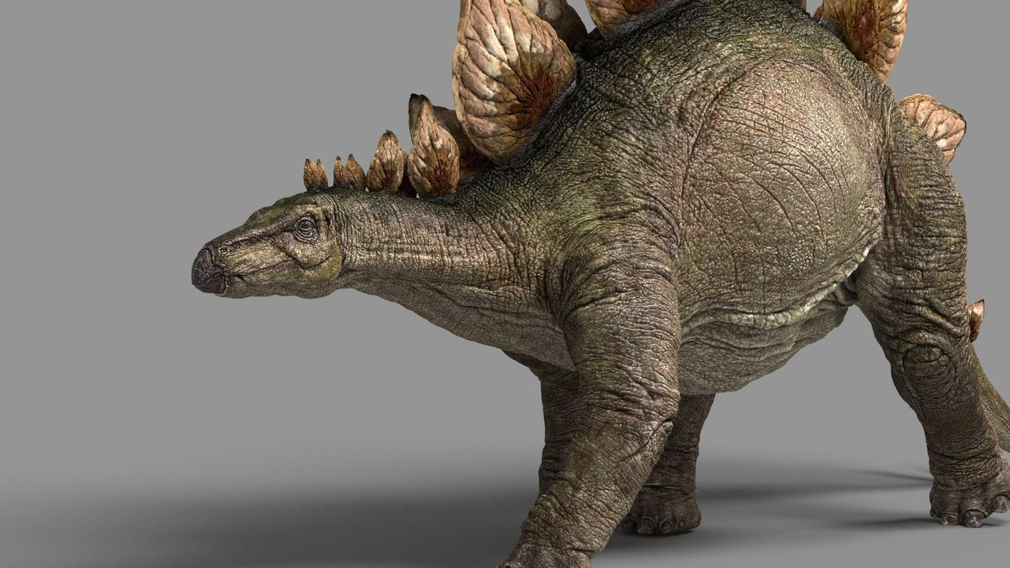 stegosaurus_03.jpg