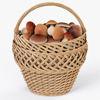 wicker basket 01 mushrooms max