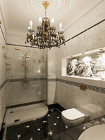 3d classical washroom
