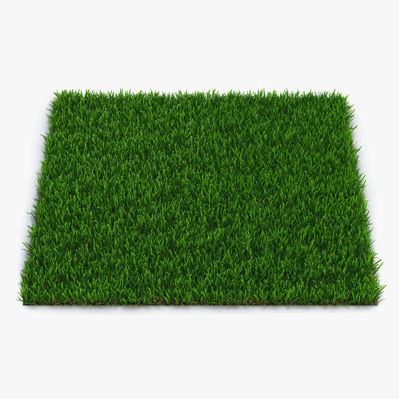 Zoysia Grass 3d model 01.jpg