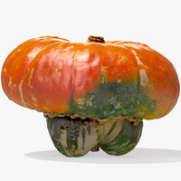 3d model orange turban squash pumpkin