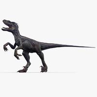velociraptor 1 animation 3d model