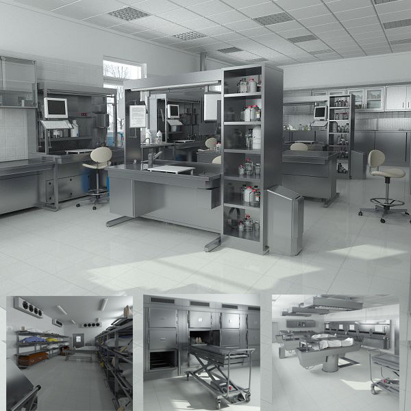 August 2014 Cpo Offers Table Jpg: Big Hd Anatomy Laboratory Equipment 3d Model