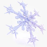snow flake d 3d model