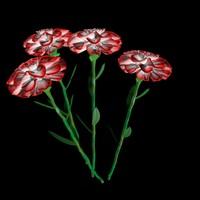 3d max carnation flower