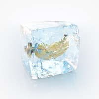 ice cube max