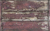 Old Wood 1