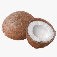 Low/High Poly Coconuts