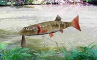 fishing lure pike max
